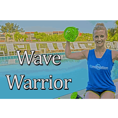 Wave Warrior Cover Image